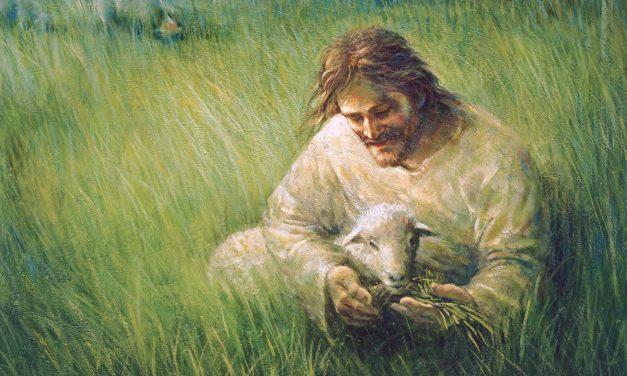 Being Cared for By Jesus