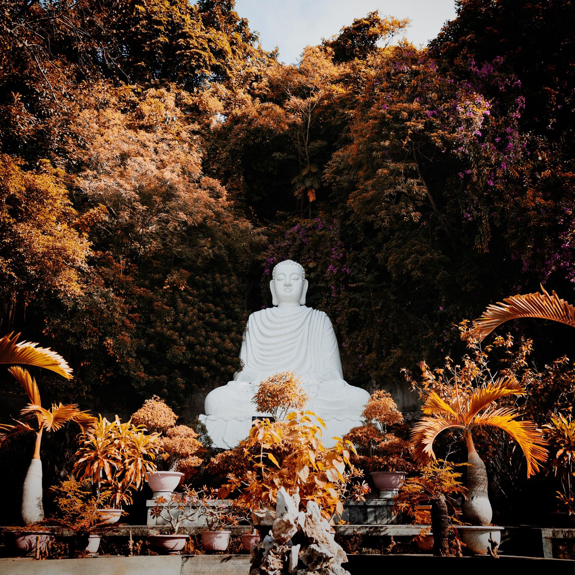 Jesus for Buddhists